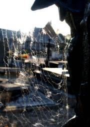 jk spiderweb